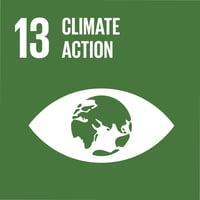 UN Goal 13