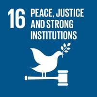 UN Goal 16